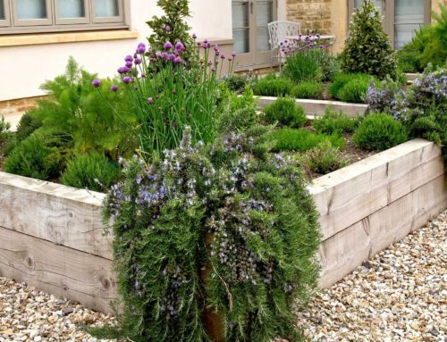 A Contemporary Cotswold Garden Design: Entertaining Areas